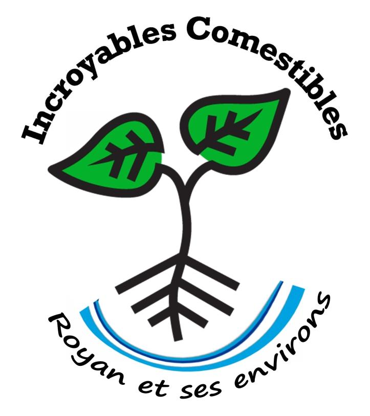 logo_ic_royan